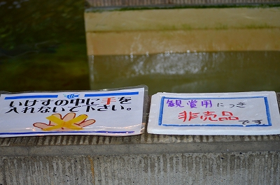 潮風大国 020