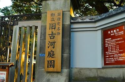 旧古河庭園 006