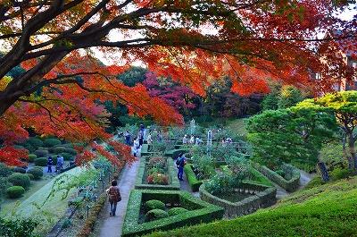 旧古河庭園 015