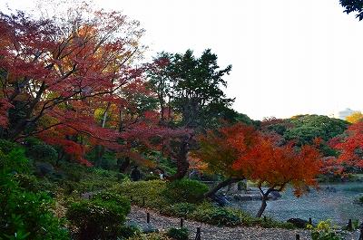 旧古河庭園 033
