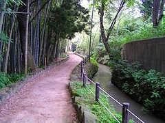 tatumi3.jpg