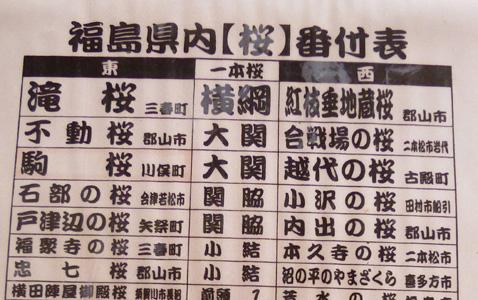0418sakurabanntukehyou.jpg