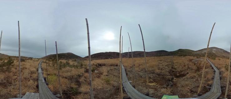竹生える浄土平湿原