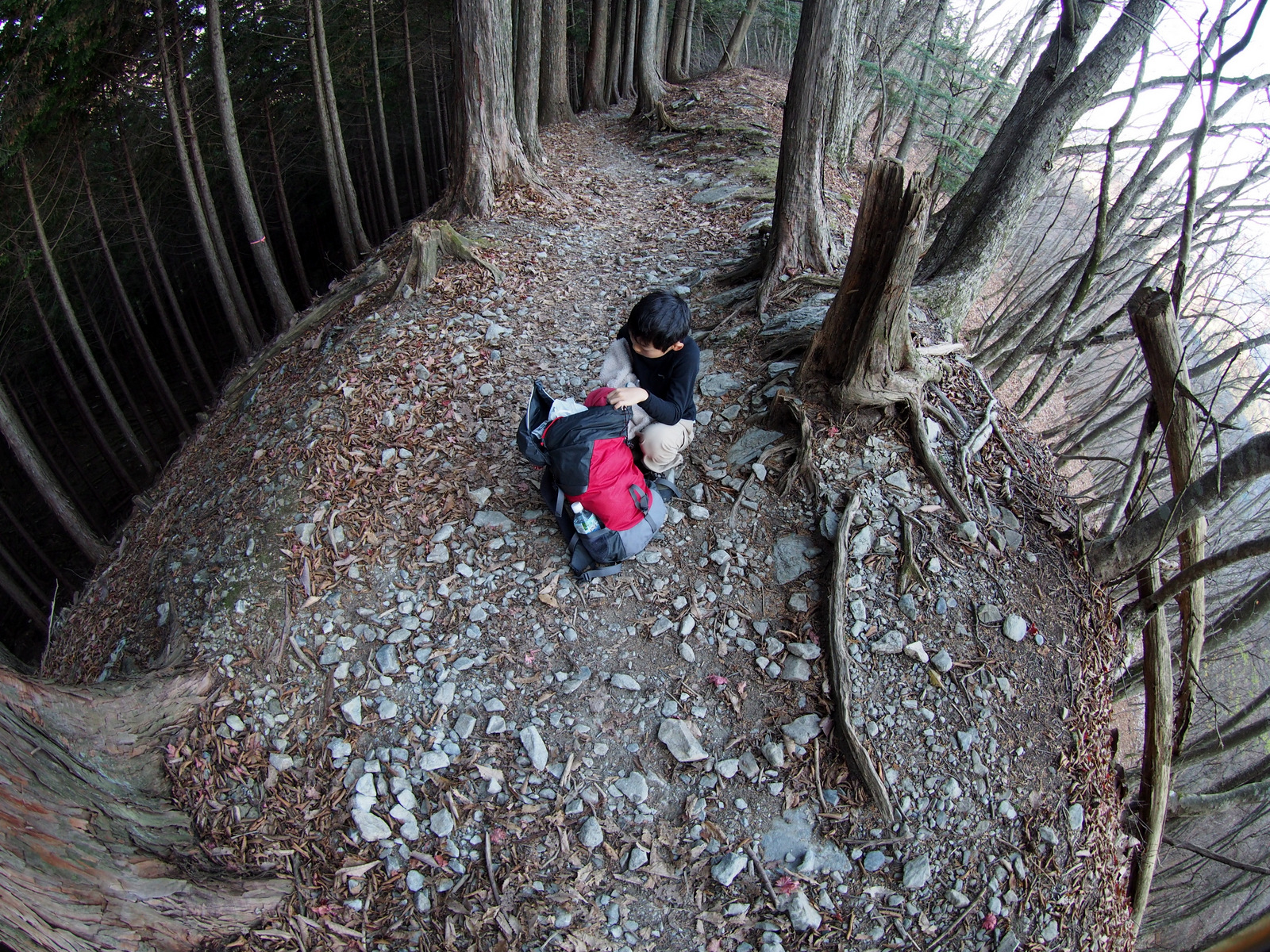 [2014雲取山]p054