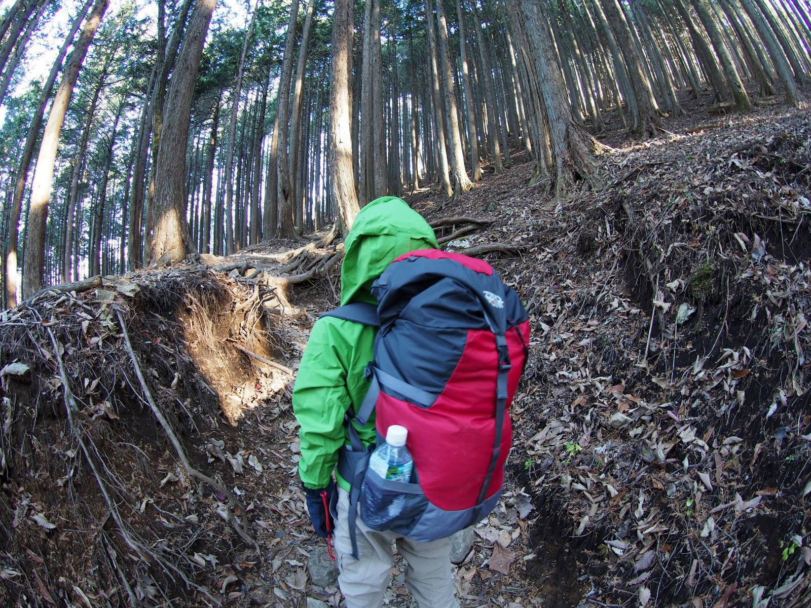 [2014雲取山]p056