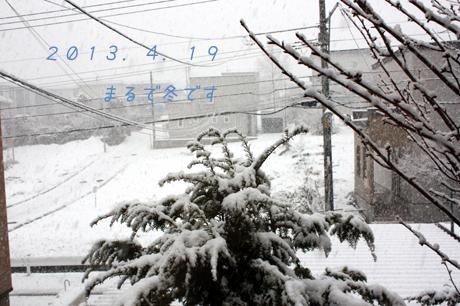 まるで・・・冬の朝