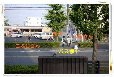26_20130612145106.jpg