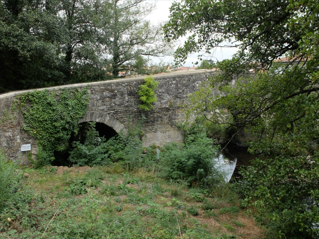フロレスの街の入口にある中世の石橋_3