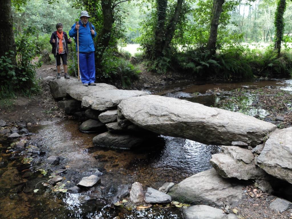 石の置橋_2