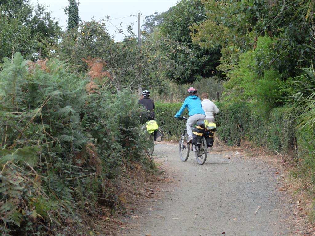 青のヤッケの自転車巡礼者は女性だったようだ