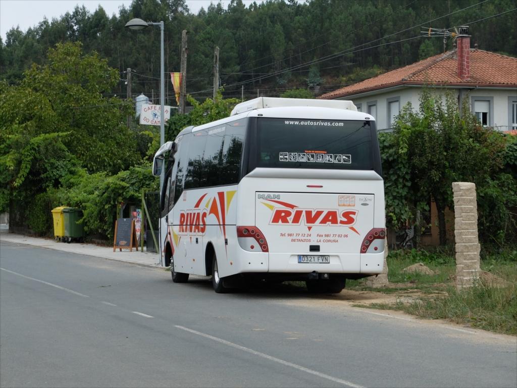 いつも見かけるこのバス