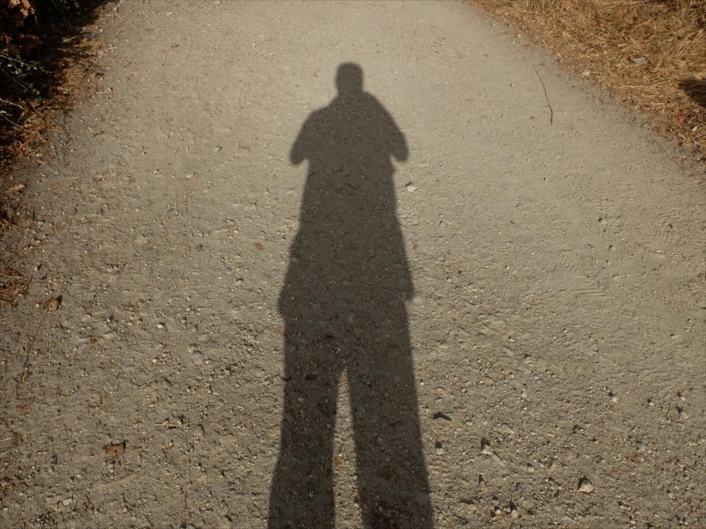 影を見ただけでわかる超胴長短足おじ(い)さんだ