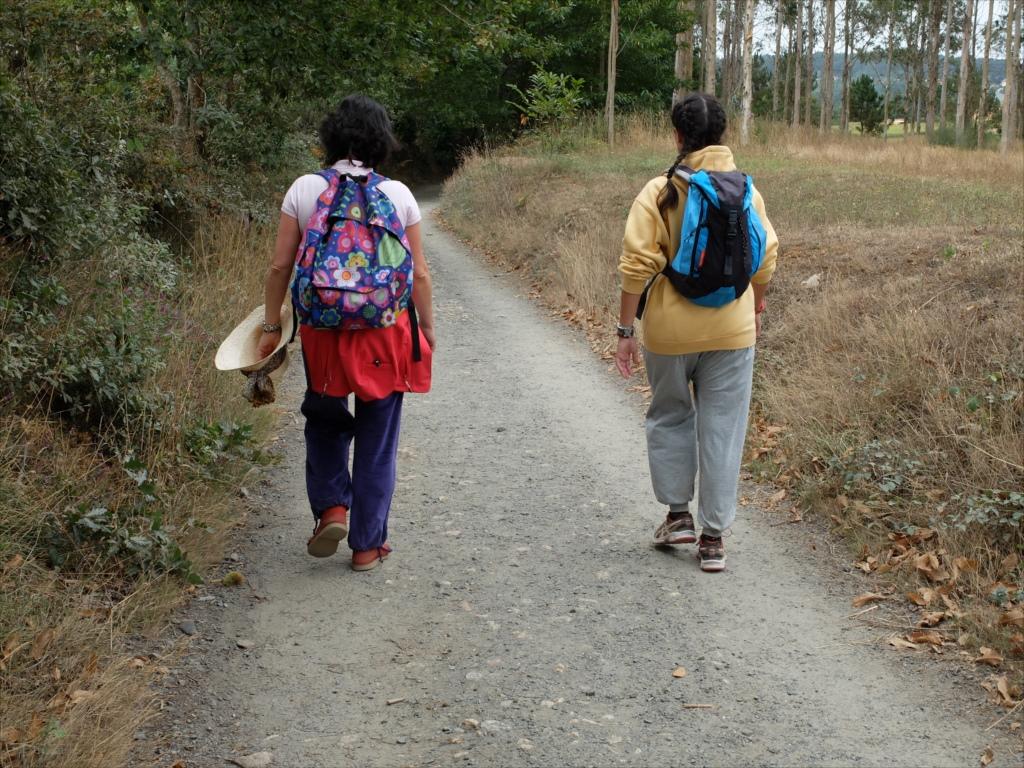 またまた普通の道を歩く歩く