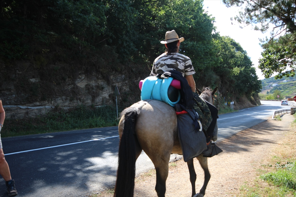 街や橋を見ながら休んでいた我々の横を馬に乗った巡礼者が通りすぎる_1