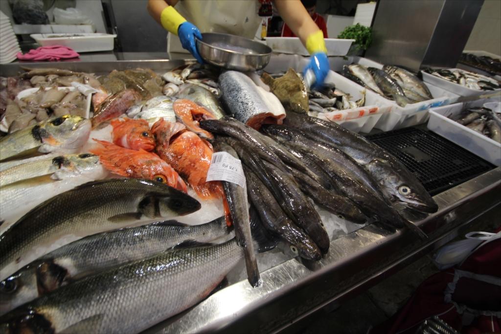 ここの魚が一番美味しそうに見えた_3