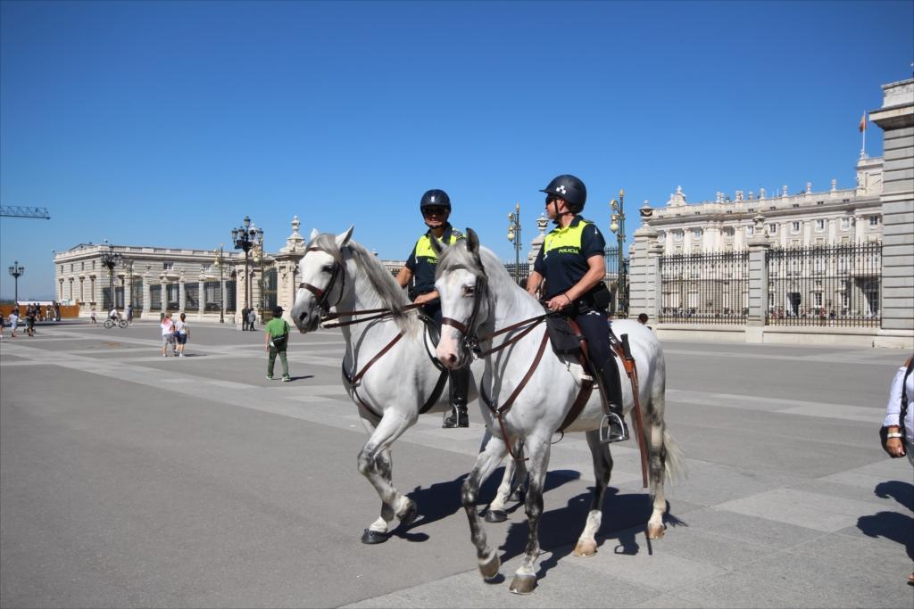 騎馬警官_3