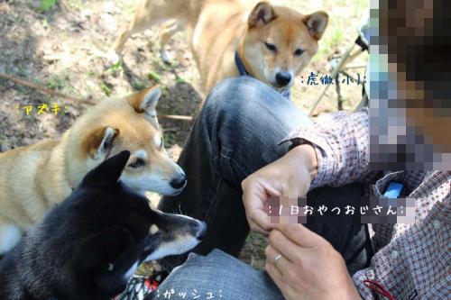 IMG_5023+AZUKI.jpg
