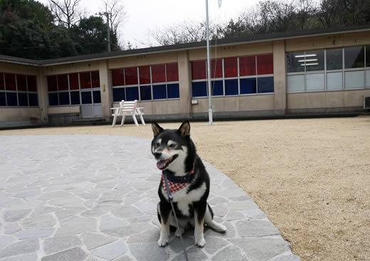 沙弥小中学校