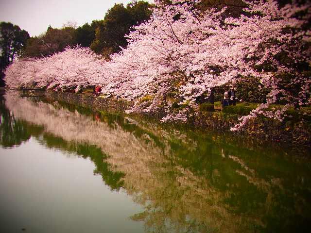 19広瀬公園3