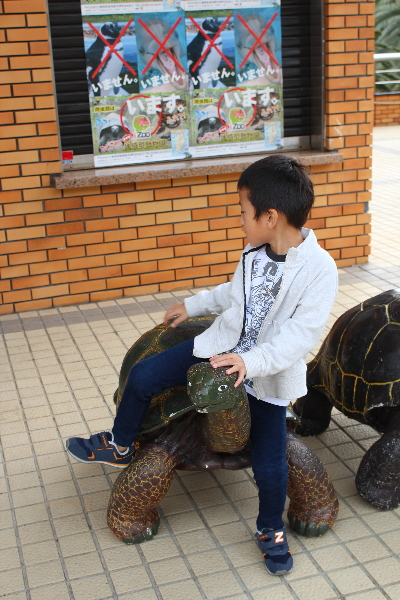 旅行 Izoo 20141025