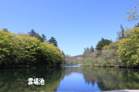 20130604_3.jpg