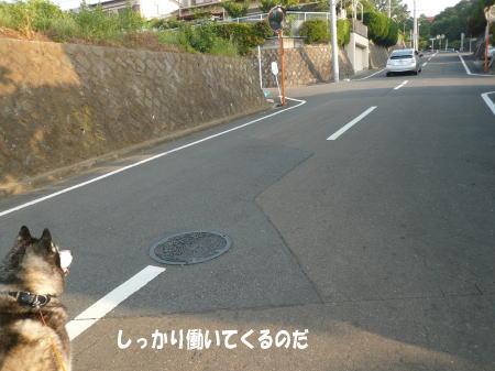 20130606_4.jpg