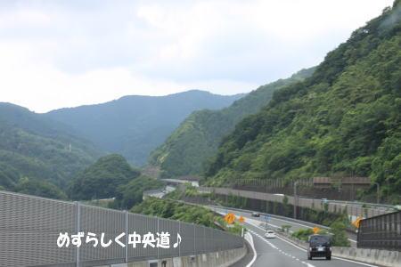 20130701_2.jpg