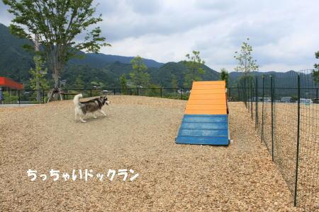 20130701_3.jpg