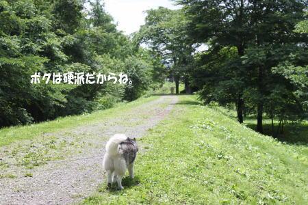20130707_12.jpg