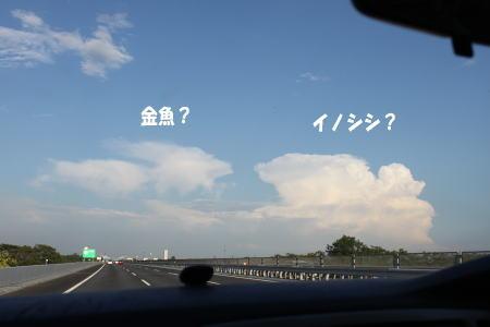 20130707_18.jpg