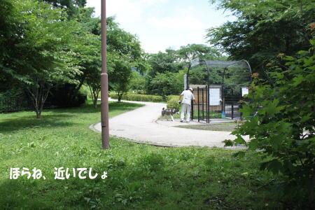 20130707_6.jpg