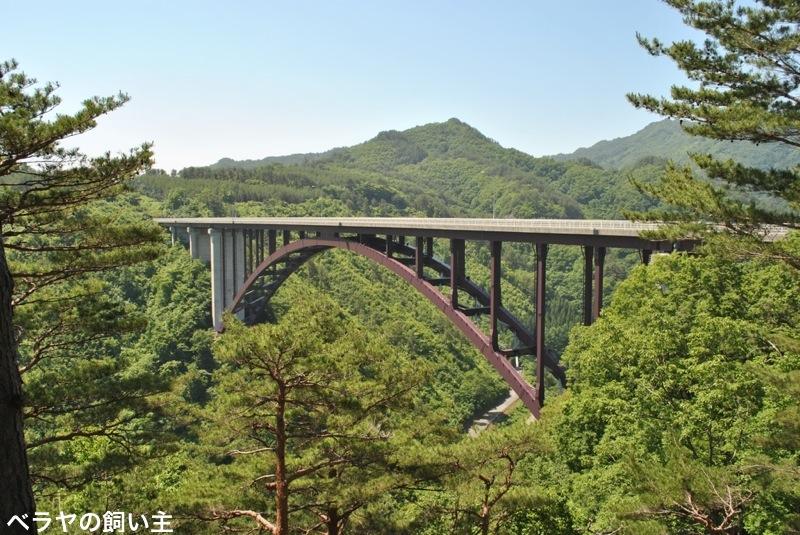 BNK-DSC_Shiino_0044.jpg
