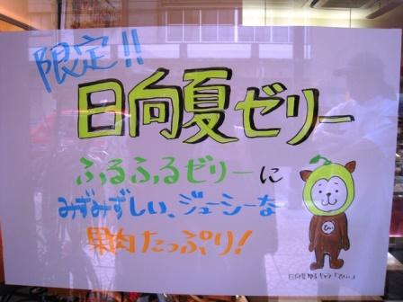 20130608hyuga3.jpg