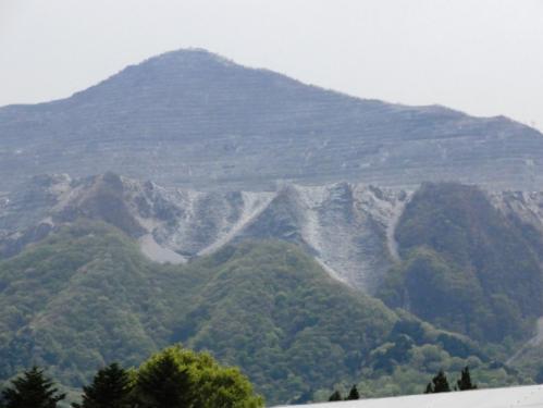 2013.4芝桜8