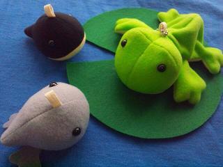 蛙の親子観察セット