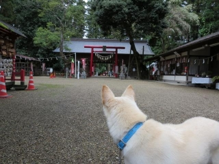神無月の神社 (1)
