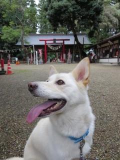 神無月の神社 (2)