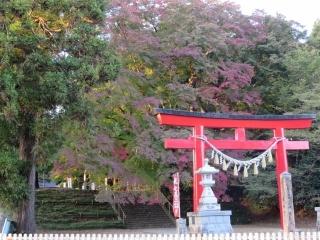 紅葉の神社 (1)