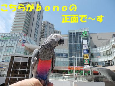 5_ボーノ3