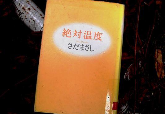 8 14.2.11 ブログ用 天理近くの寺・マンナムノム (17)