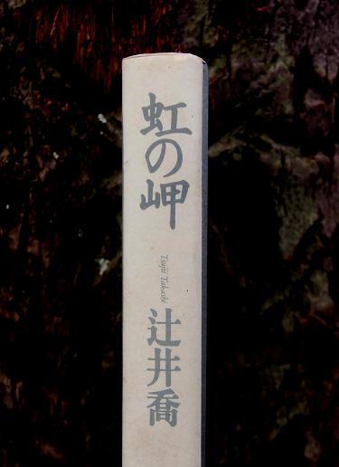 9 14.2.11 ブログ用 天理近くの寺・マンナムノム (32)