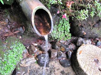 秋葉の水2