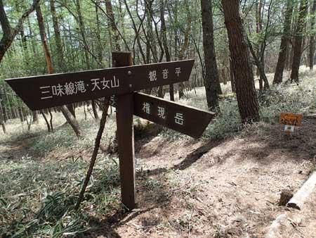 自然歩道に合流