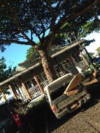 ハワイ ノースショア1
