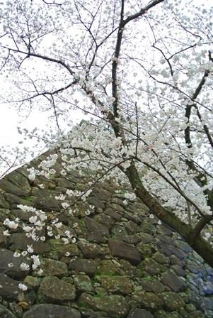 福岡城跡4