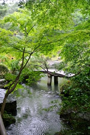 kyoto_2013_6.jpg