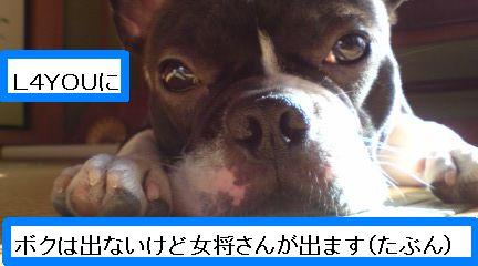 okashi192.jpg