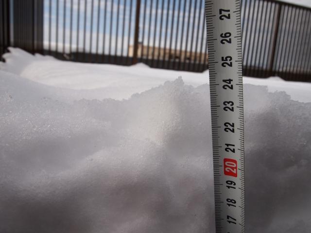 2014年2月9日積雪