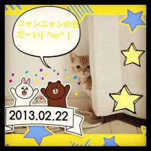 $レオさんと一緒☆猫ブログ