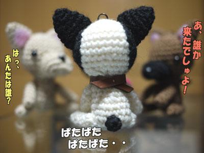 フレンチブルドッグ 編みぐるみ 4
